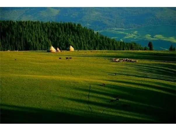空中草原美景